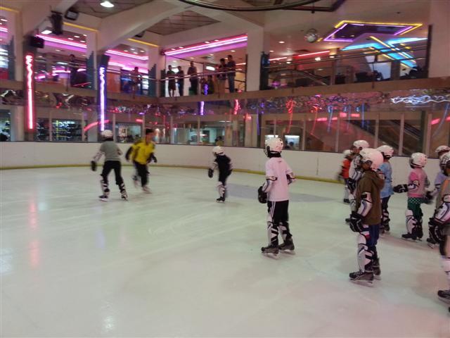 2013-2014年度澳門青少年冰球發展計劃